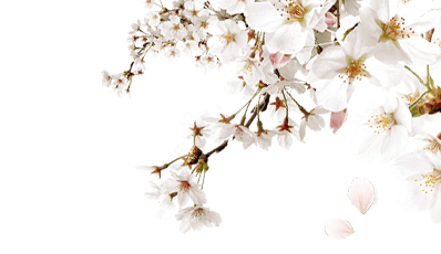 branch-right-spring